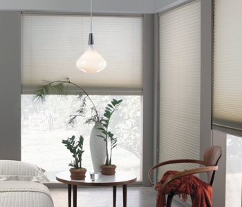 cellular shades in San Jose home