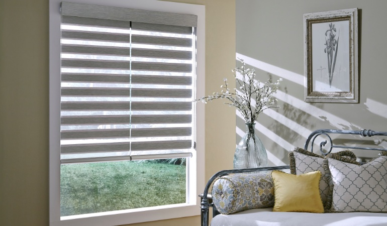 Transitional zebra shades in a window